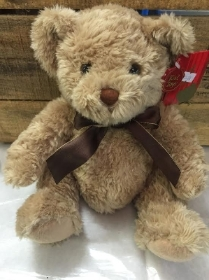 Teddy Keel Brown Large