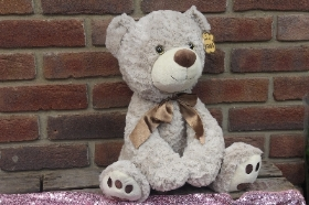 Twinkle eye grey teddy