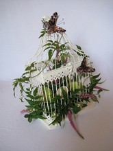 Birdcage arrangement 2